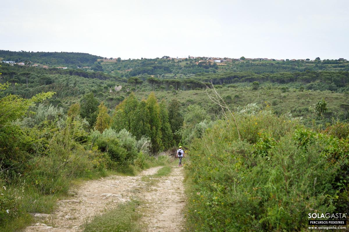 II Caminhada pela Saúde - Verride (Montemor-o-Velho)