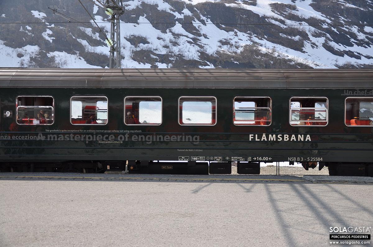 No comboio de Flåm a Myrdal (Noruega)