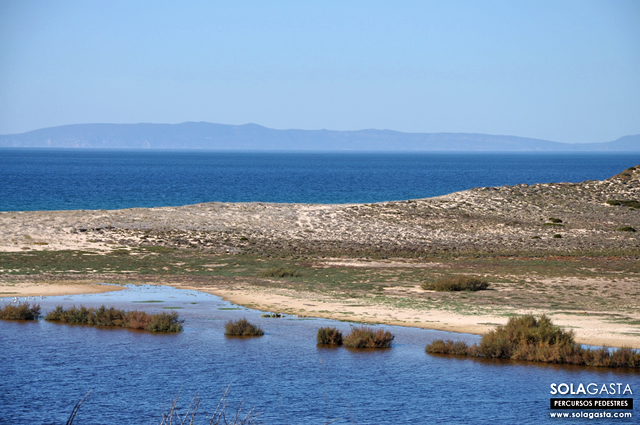 Caminhada na Lagoa e Praia de Melides (Grândola)