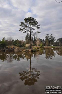 Lagoa das Queridas - Ferreira-a-Nova (Figueira da Foz)