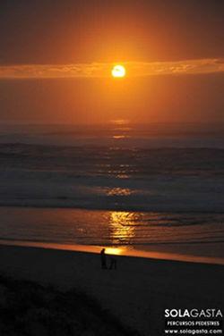 Pelas dunas da Praia de Quiaios (Figueira da Foz)