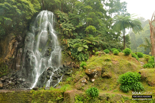 Percurso Pedestre no Parque Natural da Ribeira dos Caldeirões (Nordeste - São Miguel - Açores)