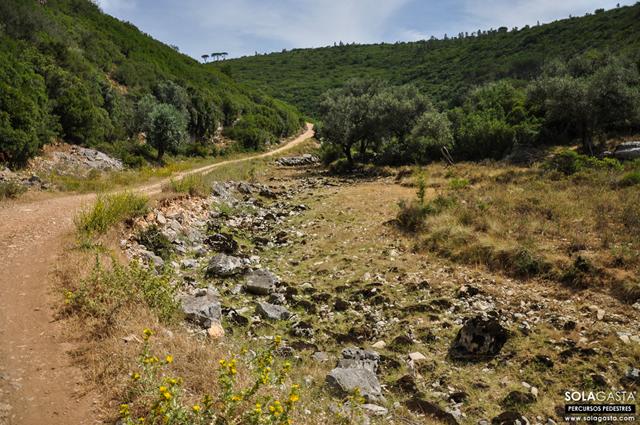 PR1 CND – Conímbriga Route (1st Part) (Condeixa-a-Nova)