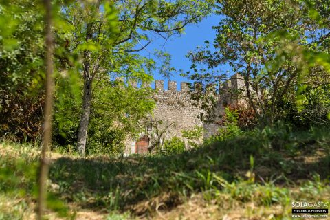 Subida ao Castelo de Pombal (Pombal)