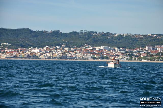 Passeio de Barco à Vela na Foz do Mondego (Figueira da Foz)