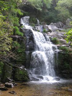 PR2 – Cabreia e Minas do Braçal (Sever do Vouga)