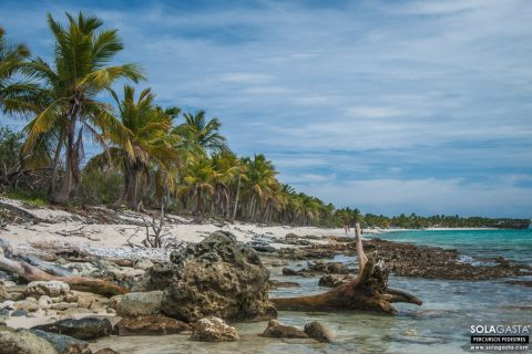 De Punta Cana à Isla Catalina e Altos de Chavón (República Dominicana)