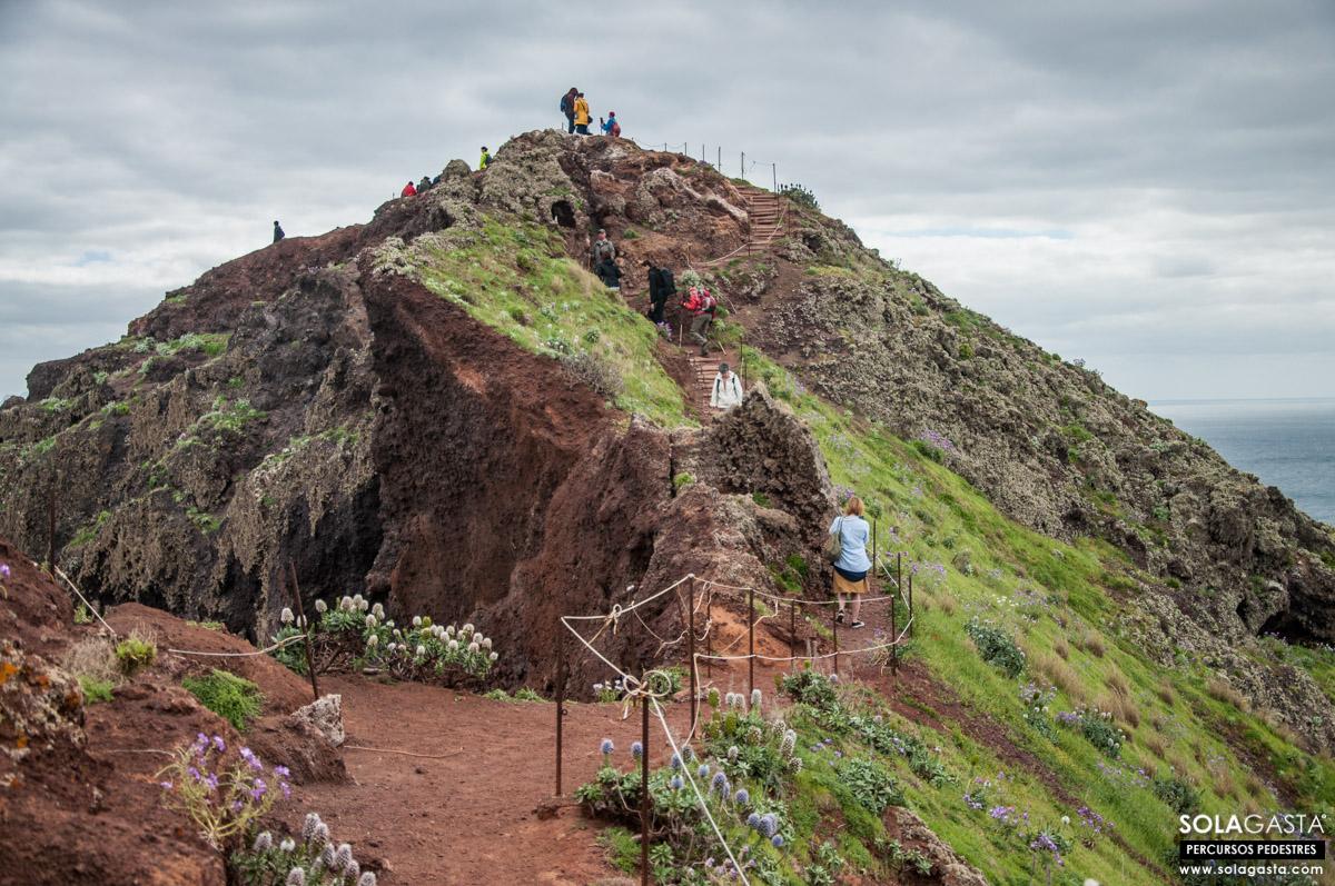 PR8 - Vereda da Ponta de São Lourenço (Machico - Madeira)