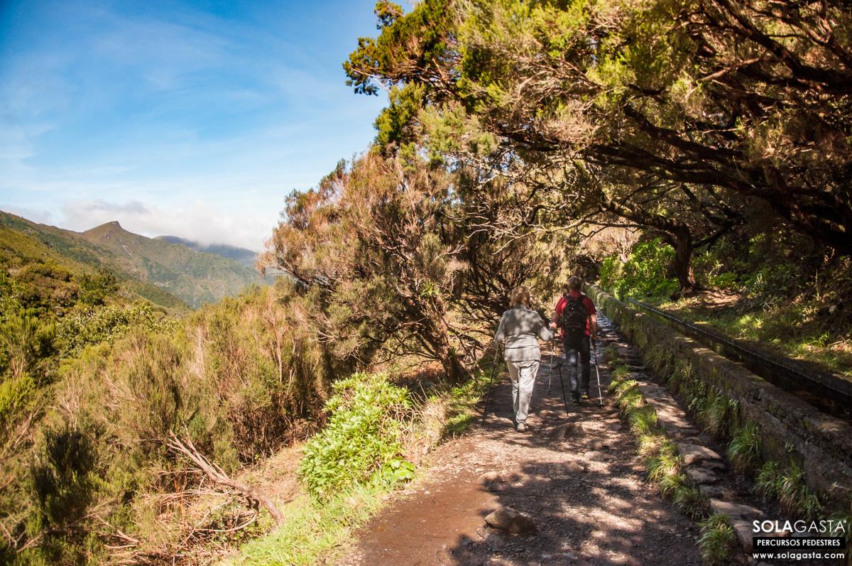 PR6 - Levada das 25 Fontes (Calheta - Madeira)