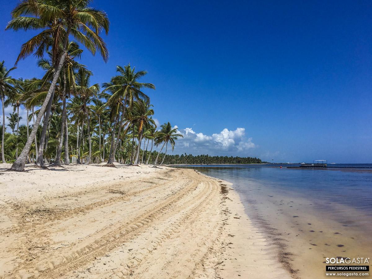 À Descoberta da Praia de Bávaro - Punta Cana (República Dominicana)